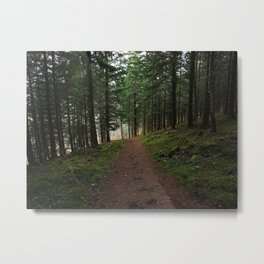 Take the fox's path - Scotland Metal Print
