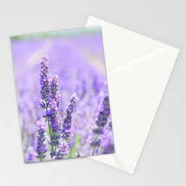 Lavender Blossom Flowers Landscape Stationery Cards