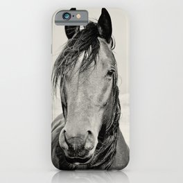 Black and White Horse Portrait iPhone Case