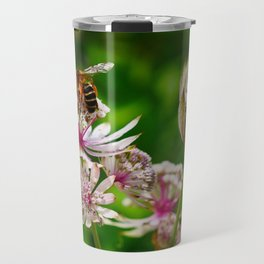 Astrantia Major | Pink and white flowers with a bee | Fine art nature photography Travel Mug