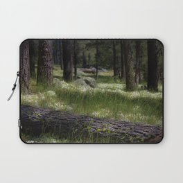 Mt. Laguna San Diego Ca Laptop Sleeve