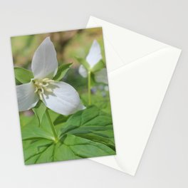 Sweet White Trilliums Stationery Cards