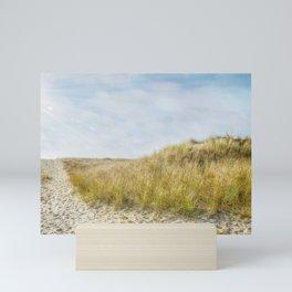 Kalmus Beach, Hyannis Mini Art Print
