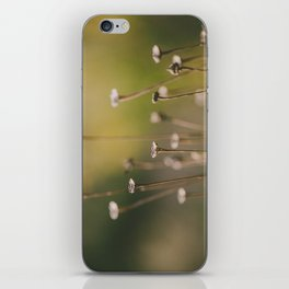 Subtleness iPhone Skin