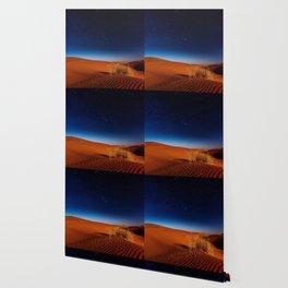 Desert Night Sky (Color) Wallpaper