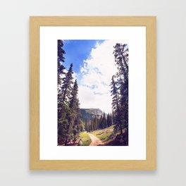 Chicago Lakes Framed Art Print