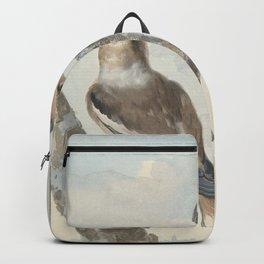 Aert Schouman - Hawfinch and Brambling (1752) Backpack