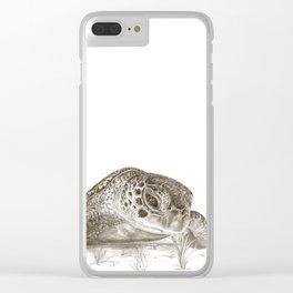 A Green Sea Turtle :: Earthtones Clear iPhone Case