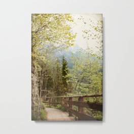 Austrian Woodland Trail and Mountain View Metal Print