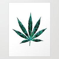 marijuana Art Prints featuring Marijuana Leaf by Tal Friedlander