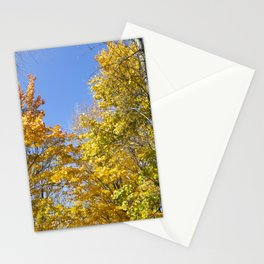 Maple tree autumn Stationery Cards