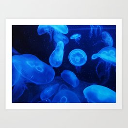 Blue Jellyfish IV Art Print