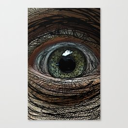 Linear Eye Canvas Print