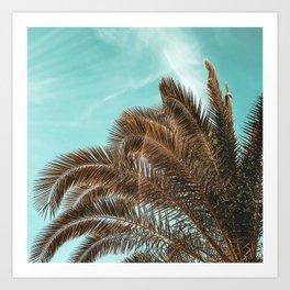 Summer Palm Leaf Print {1 of 3} | Teal Sun Sky Beach Vibes Tropical Plant Nature Art Art Print