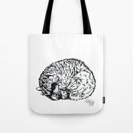 Sleeping Raccoon Tote Bag
