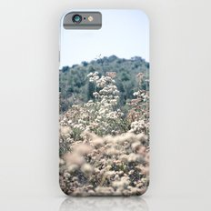 Buckwheat Afternoon iPhone 6s Slim Case