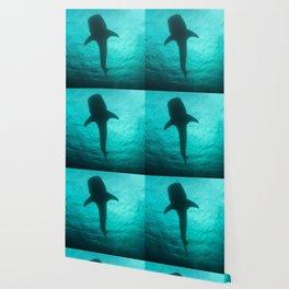 Whale shark silhouette Wallpaper
