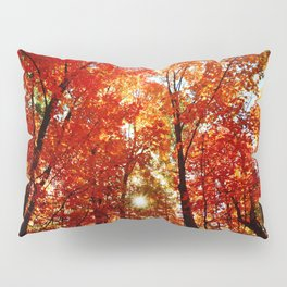 Sun in the Trees Pillow Sham