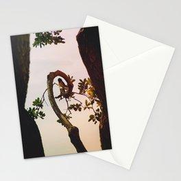 Niche Stationery Cards