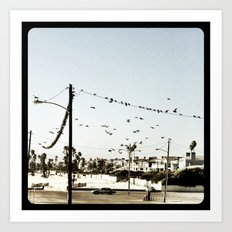 The birds. Art Print