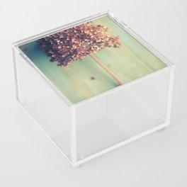 Autumnal Light no.2 Acrylic Box