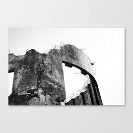 Demolish Canvas Print