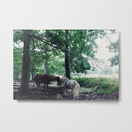 Magic Horses Metal Print