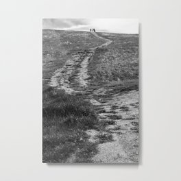 Trail through the Green Metal Print