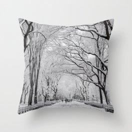 Poet's Walk, Winter Throw Pillow