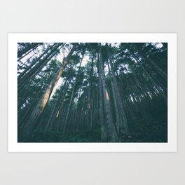 Evergreen State Art Print