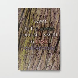 I Went To The Woods Metal Print