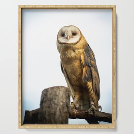 Barn Owl Serving Tray