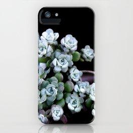 Sedum Clavatum iPhone Case