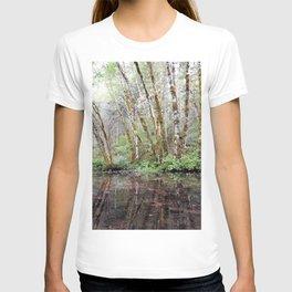 Aspen Reflection T-shirt