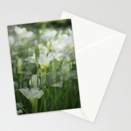 Mountain Jonquils Stationery Cards