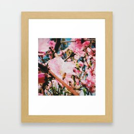 Bee a blossom Framed Art Print