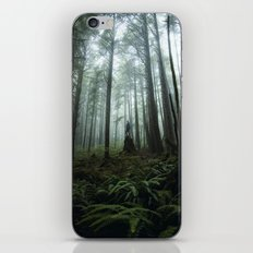 Olympic Forest iPhone & iPod Skin