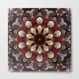 Beet vegetable mandala II Metal Print