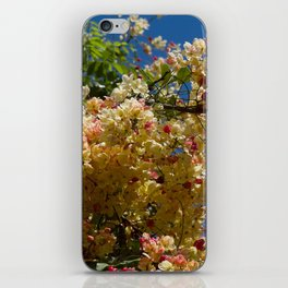 Wilhelmina Tenney Rainbow Shower Tree iPhone Skin