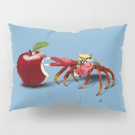 Core (Colour) Pillow Sham