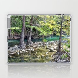 Cypress Trees Laptop & iPad Skin