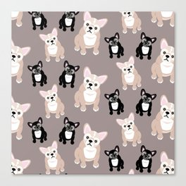 French Bulldog Puppies Canvas Print