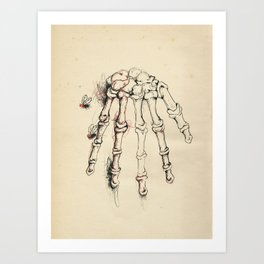 Cabinet of Curiosities No.2 Art Print