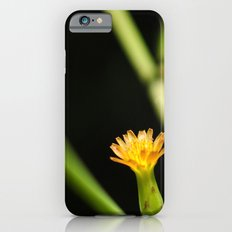Orange Wildflower Slim Case iPhone 6s