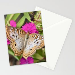 White Peacock Butterfly on Flowers Stationery Cards