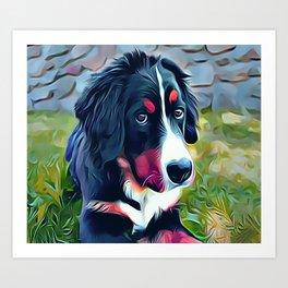 Burnese Mountain Dog Puppy Art Print