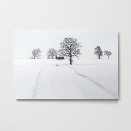 Rural Winter Landscape Metal Print