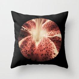 Stargazer 3 Throw Pillow