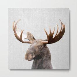 Moose - Colorful Metal Print