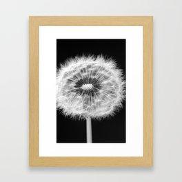 missing dandelion Framed Art Print